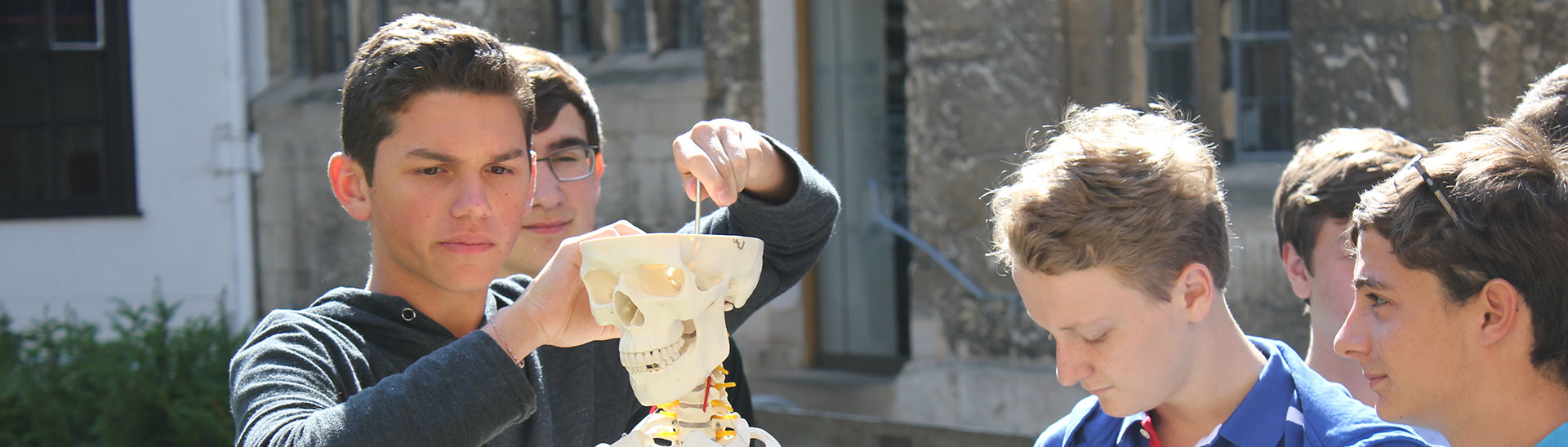 Oxbridge students studying medicine viewing human skeleton
